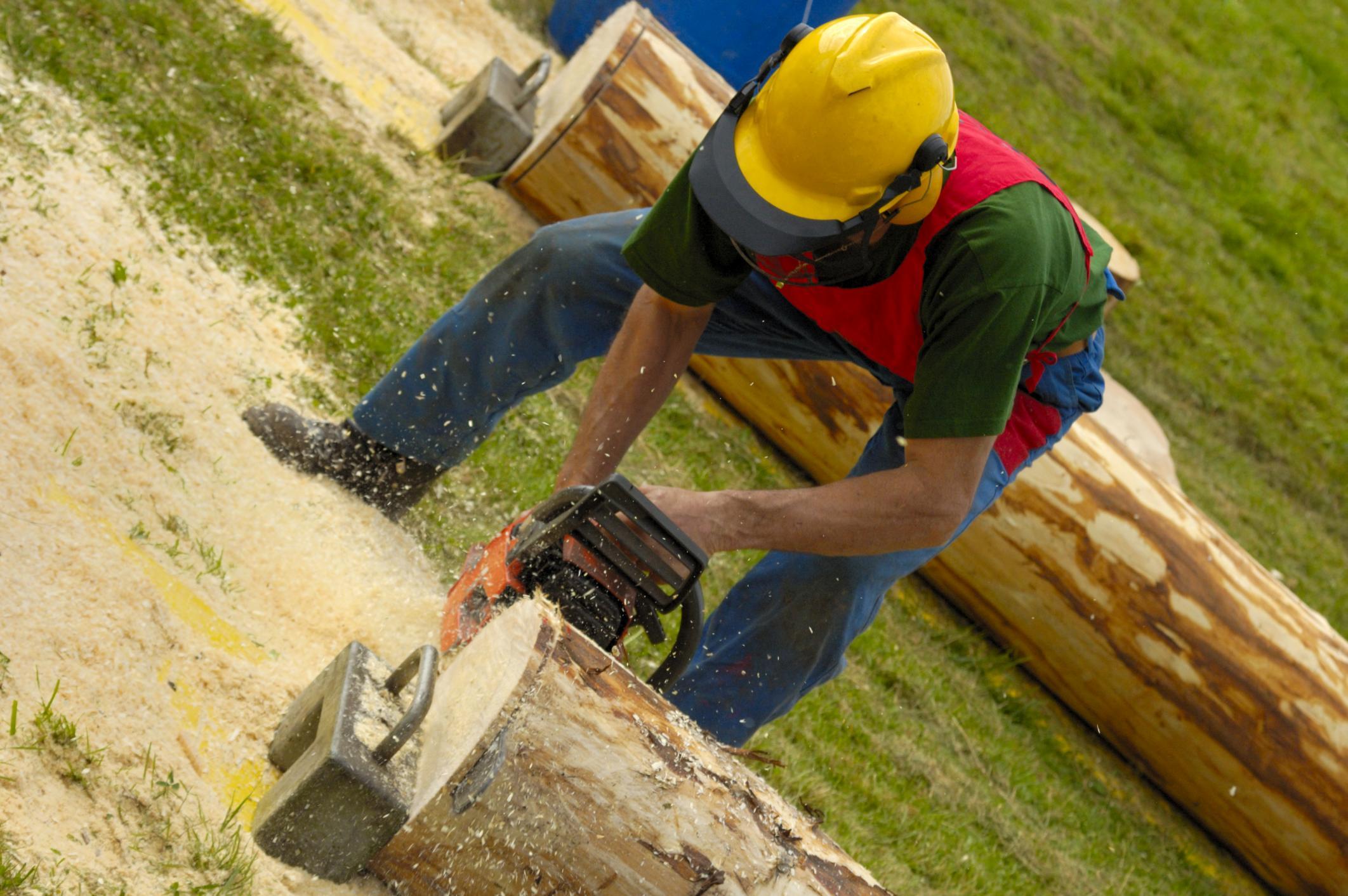 tree service in colorado springs