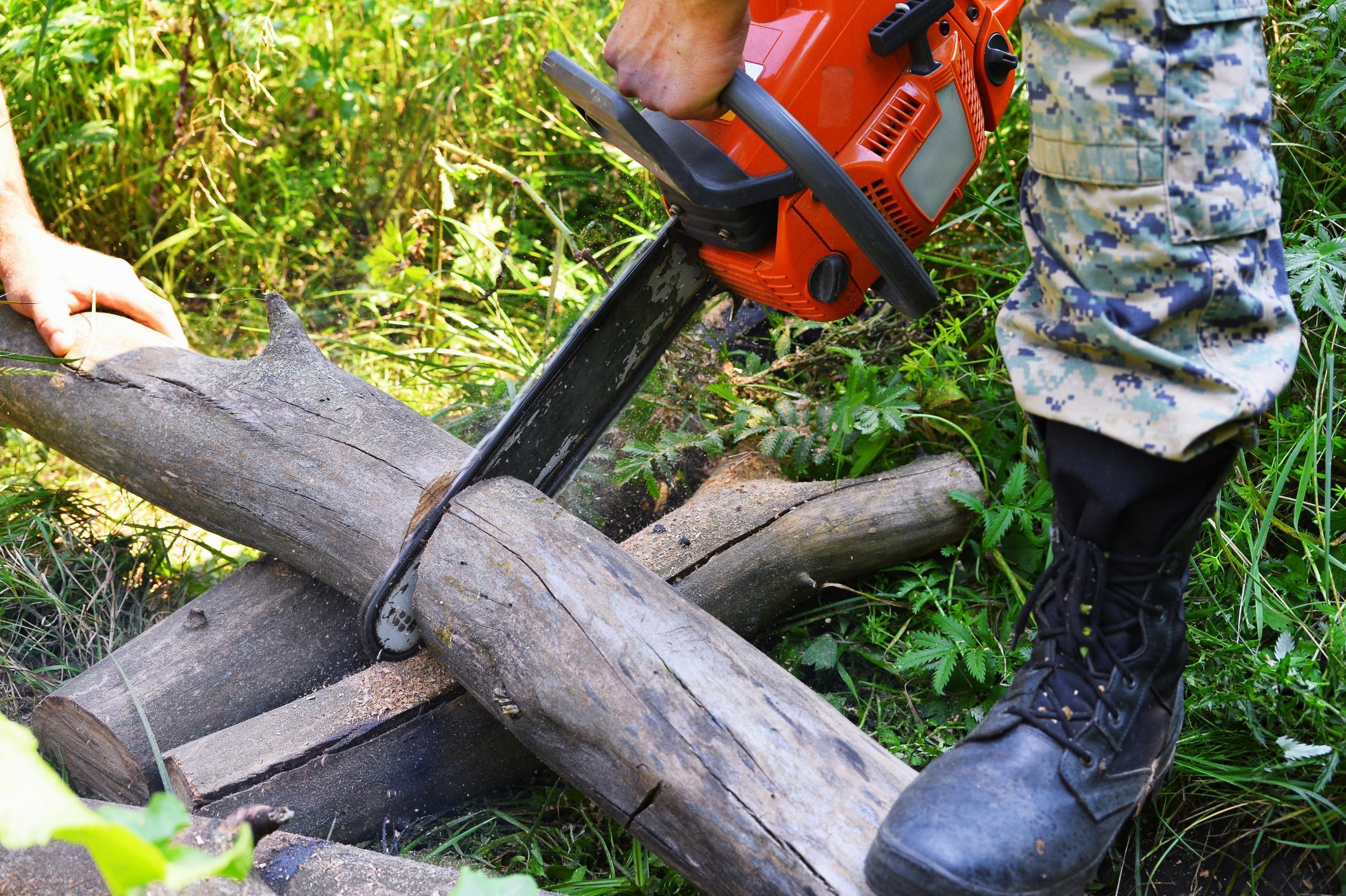 tree removal colorado springs co